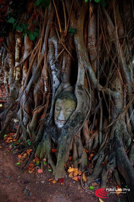 Fotografo in Thailandia