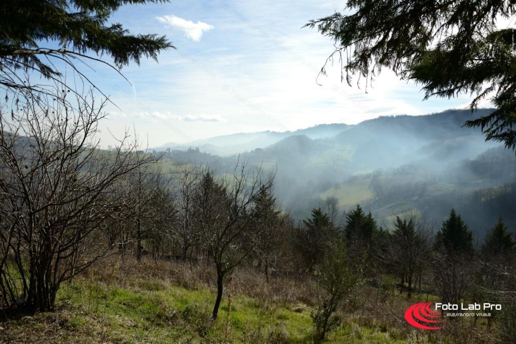 Nebbia tra le colline di Votigno