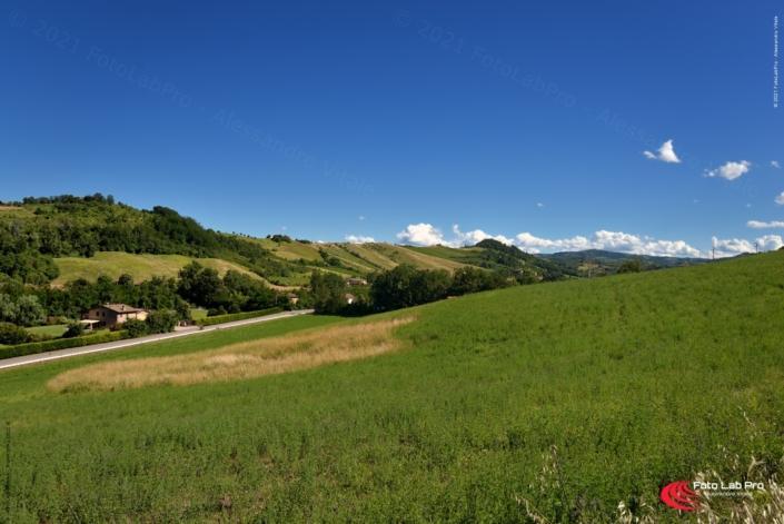 Cicloturismo colline bolognesi